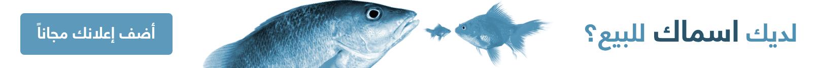 اعلن عن جميع انواع الأسماك مجانا